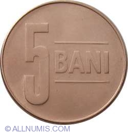 5 Bani 2008
