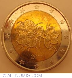Image #2 of 2 Euro 2011