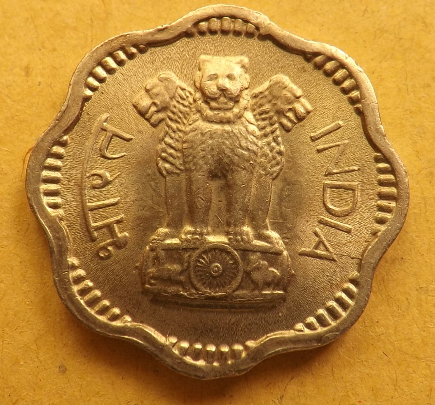 11th CAD bronze coin of the Chola Dynasty that ruled South India,Certif /& Album