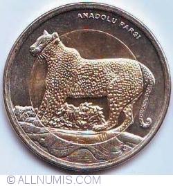 Imaginea #2 a 1 Lira 2012 - Leopardul anatolian