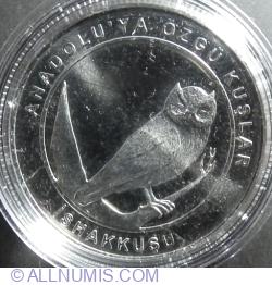 1 Kuruş 2018 - Eurasian Scops Owl