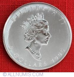 Image #2 of 5 Dollars 1995 - Maple leaf