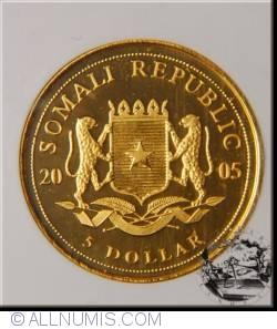 Image #2 of 5 Dolari 2005 - Terrarum Coloniae