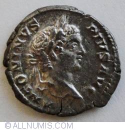 Image #1 of Silver Denar Caracalla Liberalitas