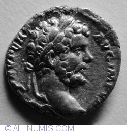 Image #1 of Silver Denar Septimius Severus - Fortuna