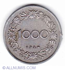 Imaginea #1 a 1000 Kronen 1924