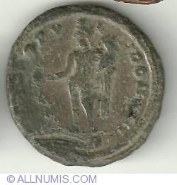 Imaginea #2 a Follis Maximianus