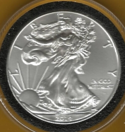 Image #1 of Silver Eagle 2014