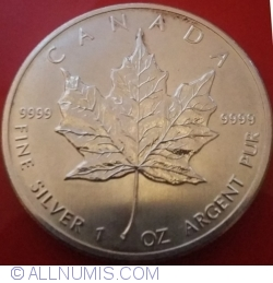 Image #2 of 5 Dollars 2013 - Maple Leaf