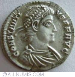 Image #1 of 1 Siliqua ND (337-361)