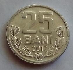 25 Bani 2017