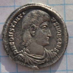 Siliqua 351-354