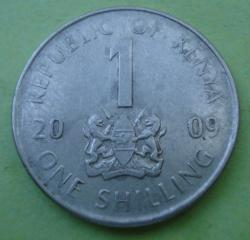 Imaginea #1 a 1 Shilling 2009