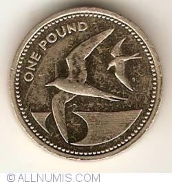 Image #1 of 1 Pound 1984