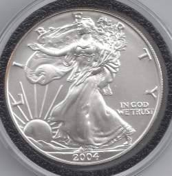 Image #1 of Silver Eagle 2004