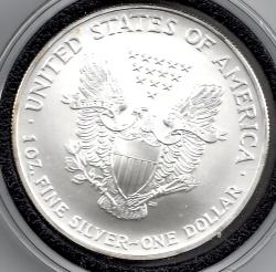 Image #2 of Silver Eagle 2004