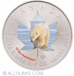 Image #2 of 5 Dollars 2014 Maple Leaf - Polar Bear  Color