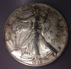 Image #1 of Silver Eagle 1989
