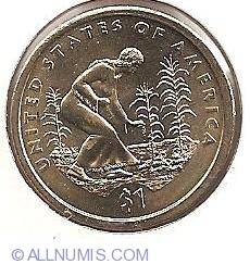 Image #2 of Sacagawea Dollar 2009 P - Three Sisters Agriculture - Native American woman planting seeds